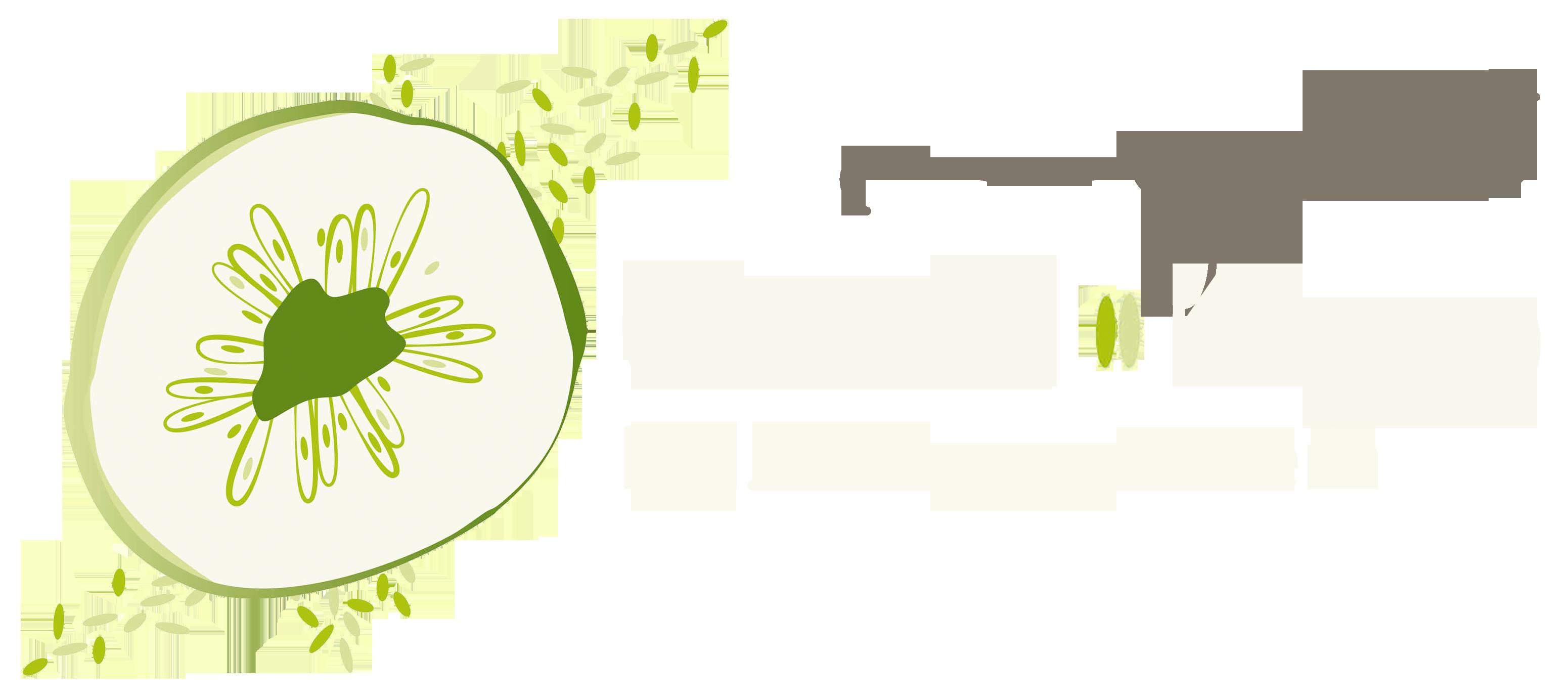 gsunt_logo