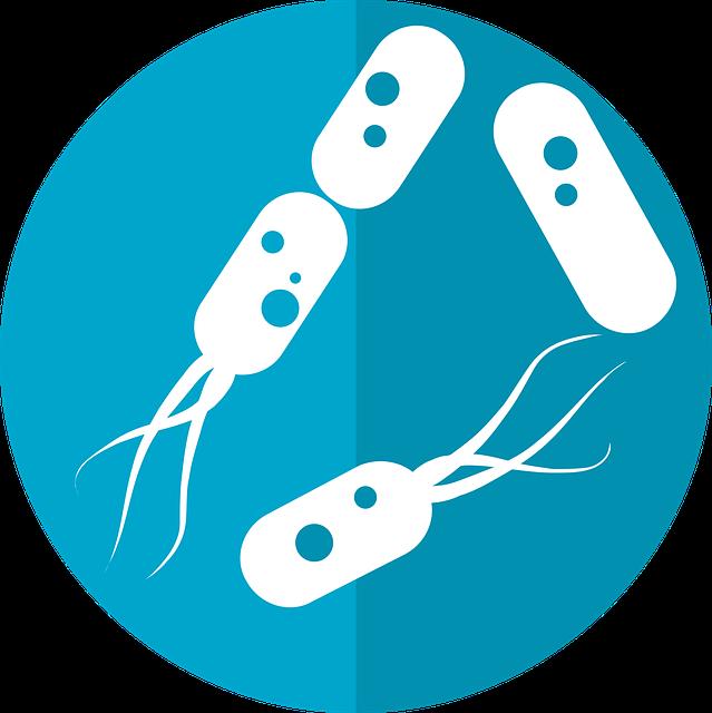 bacteria-icon-2316230_640